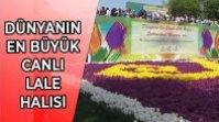DÜNYANIN EN BÜYÜK CANLI LALE HALISI – 14. LALE FESTİVALİ İSTANBUL